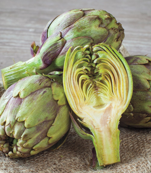 All About Artichokes